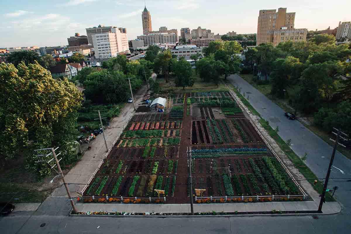Nasce a Detroit la prima AGRIHOOD urbana