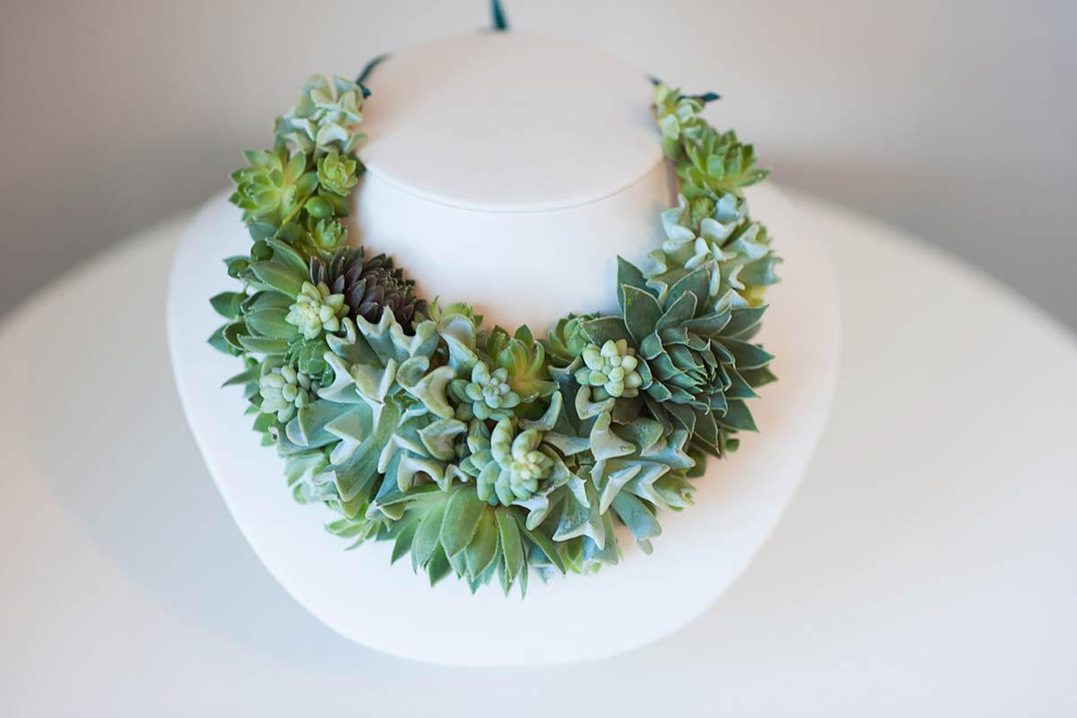 Le piante grasse da indossare di Susan McLeary